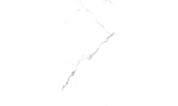 雪花白LFJ91801P
