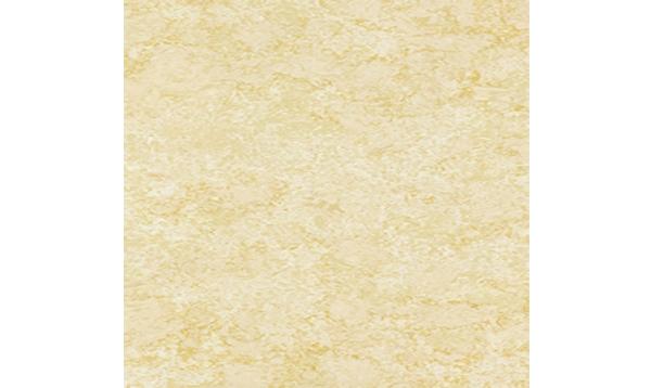 黄金海岸 LFP8803