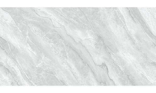 DP918L101塞纳河