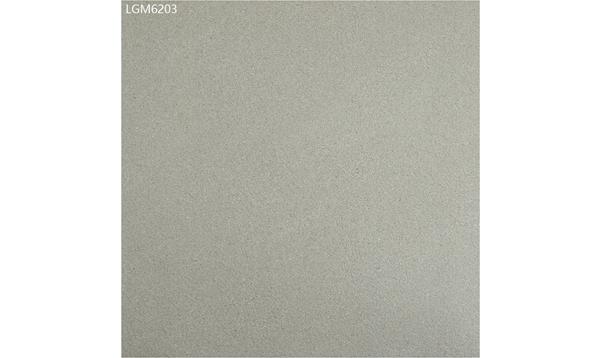 LGM6203