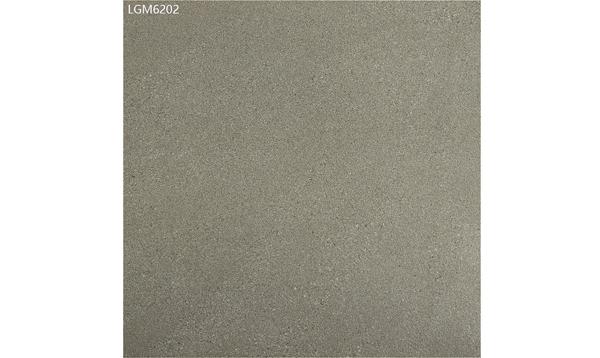 LGM6202