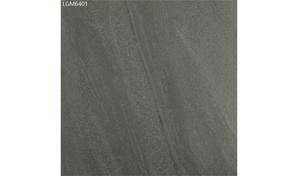 LGM6401